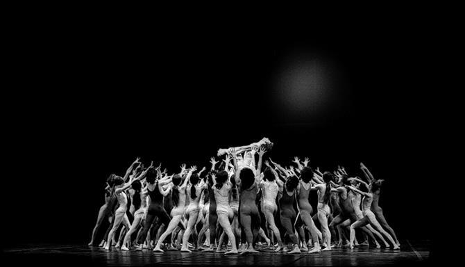 Maurice Béjart: A Essência da Dança