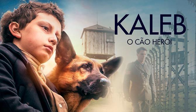 Kaleb - O Cão Herói