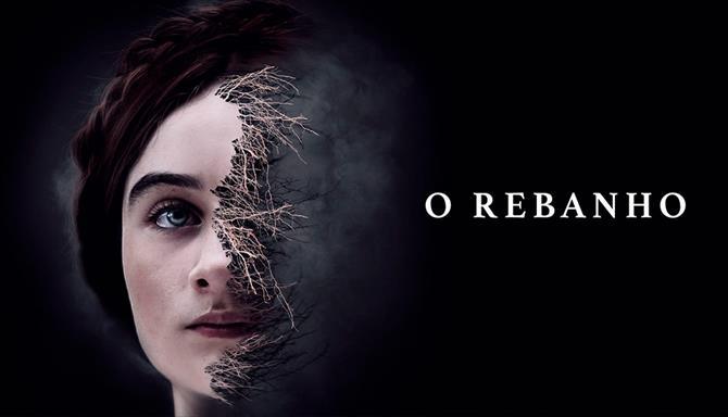O Rebanho