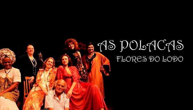 As Polacas - Flores do Lodo