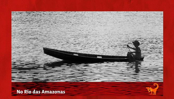 No Rio das Amazonas