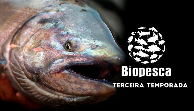 Biopesca - 3ª Temporada