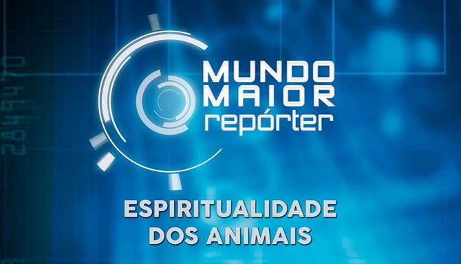 Mundo Maior Repórter -  Espiritualidade dos Animais