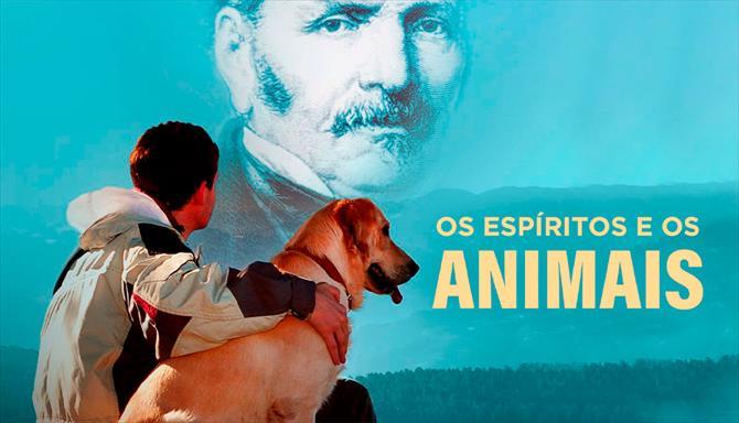 Os Espíritos e os Animais