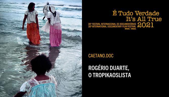 Rogério Duarte, O Tropikaolista