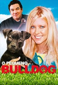 O Pequeno Bulldog