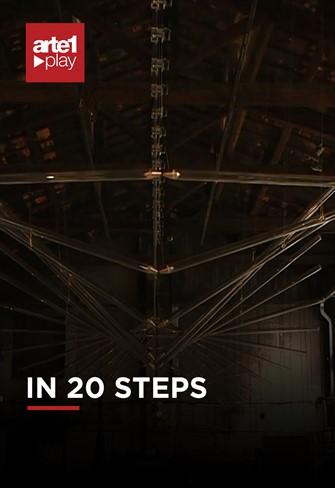 IN 20 STEPS