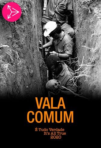 Vala Comum