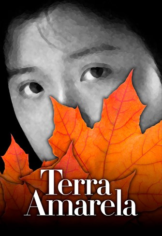 Terra Amarela
