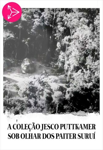 A Coleção Jesco Puttkamer Sob Olhar dos Paiter Suruí