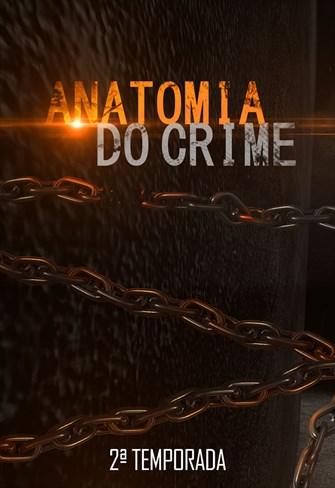 Anatomia do Crime - 2ª Temporada