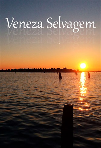 Veneza Selvagem