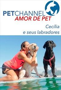 Amor de Pet - Cecília e seus Labradores