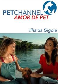 Amor de Pet - Ilha da Gigoia