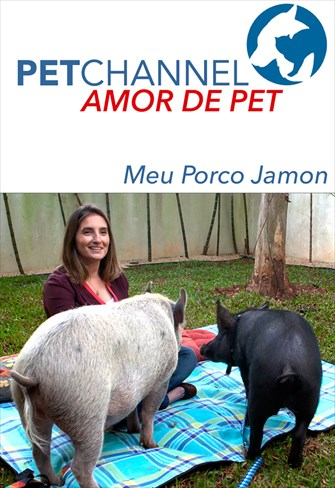 Amor de Pet - Meu Porco Jamon