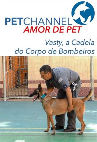 Amor de Pet - Vasty, a Cadela de Resgate do Corpo de Bombeiros