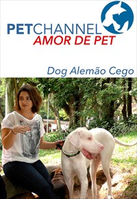 Amor de Pet - Dog Alemão Cego