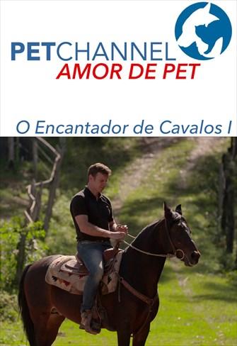 Amor de Pet - O Encantador de Cavalos - Parte 1