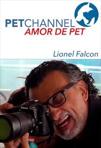 Amor de Pet - Lionel Falcon