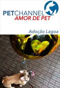 Amor de Pet - Adoção Lagoa