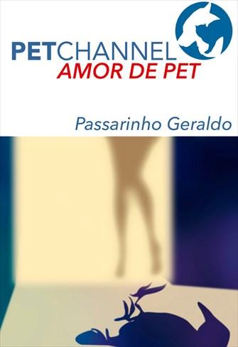 Amor de Pet - Passarinho Geraldo