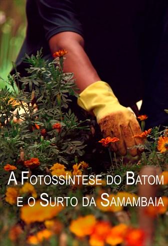 Estilhaços - A Fotossíntese do Batom e o Surto da Samambaia