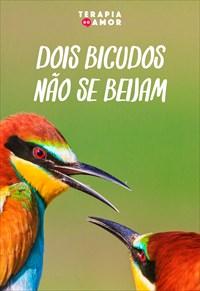 Dois bicudos não se beijam - Terapia dos Amor - 26/09/19